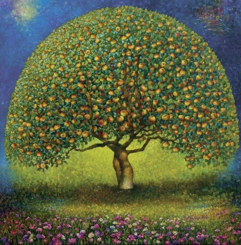 Dessin arbre fruitier pictures for Arbre fruitier